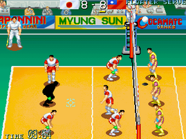 World Cup Volley '95
